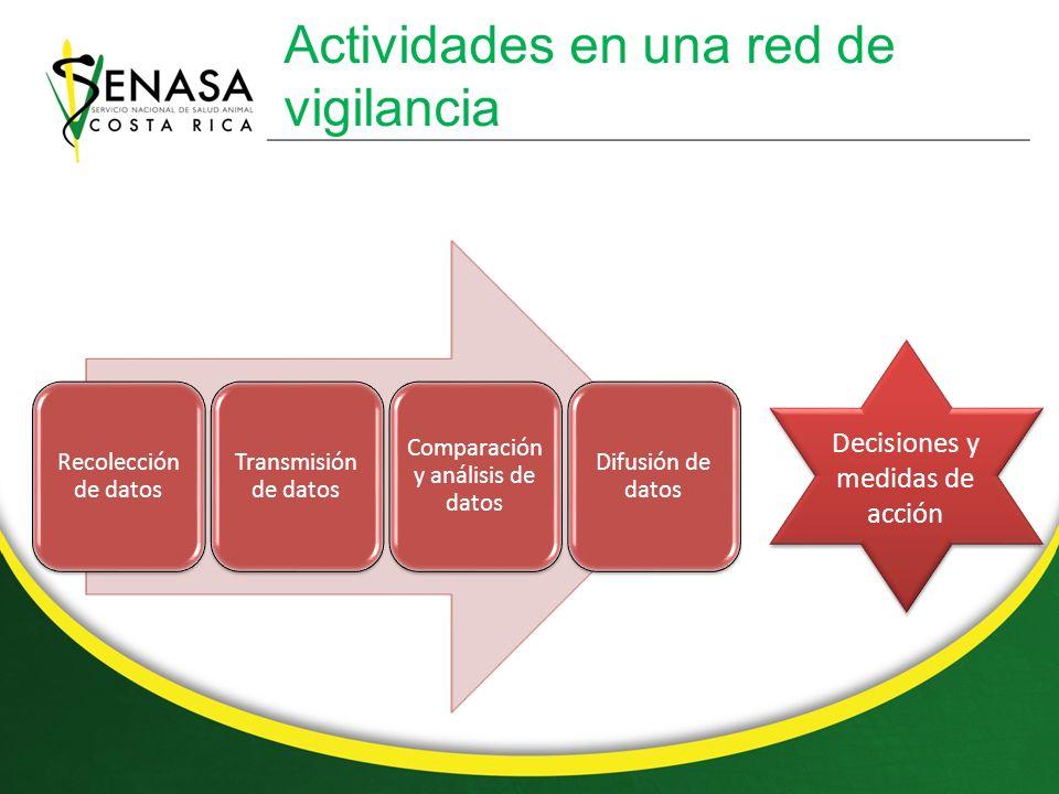 Actividades en una red de vigilancia