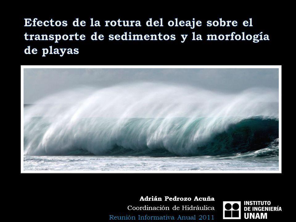 Efectos de la rotura del oleaje sobre el transporte de sedimentos y la morfología de playas