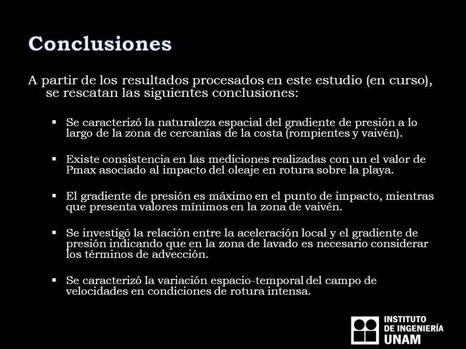 Conclusiones A partir de los resultados procesados en este estudio (en curso), se rescatan las siguientes conclusiones: