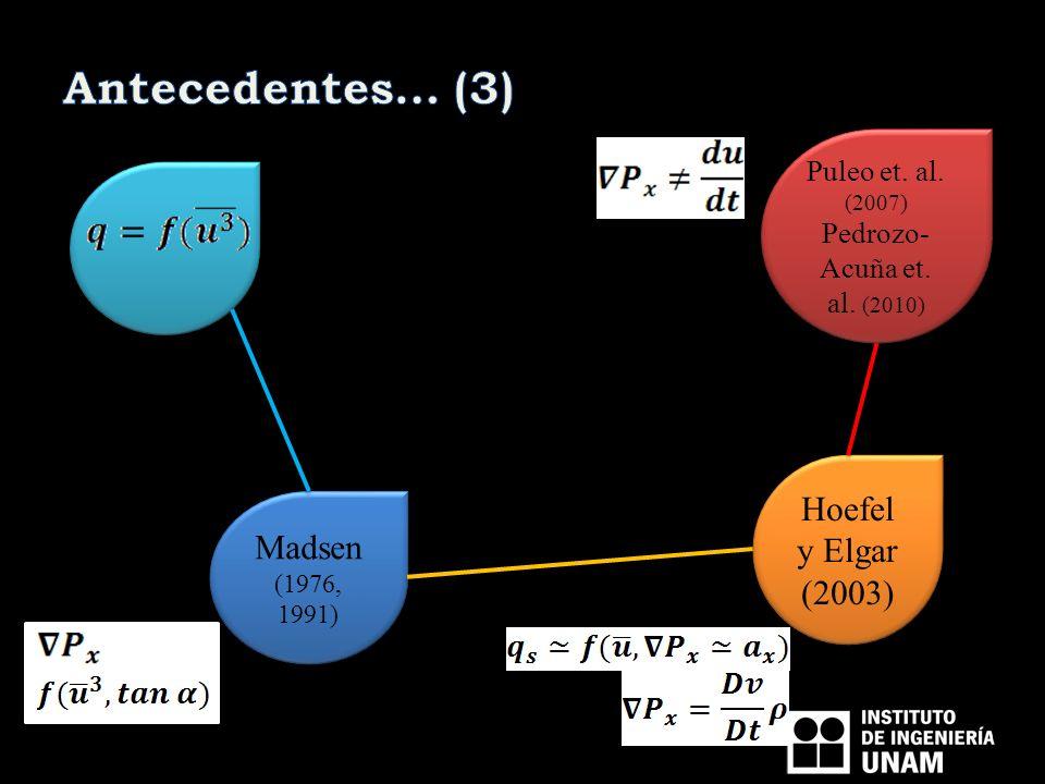 Antecedentes… (3) Hoefel y Elgar (2003) Madsen (1976, 1991)