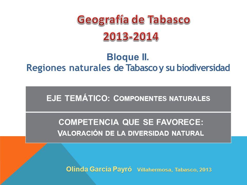 Geografía de Tabasco 2013-2014 Bloque II.