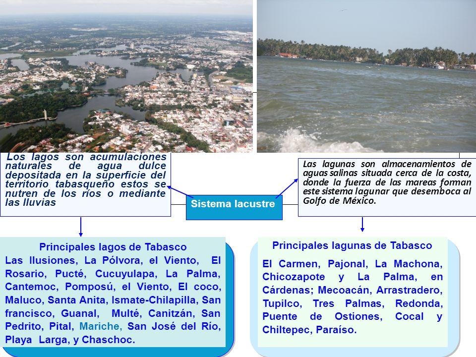 Principales lagunas de Tabasco Principales lagos de Tabasco