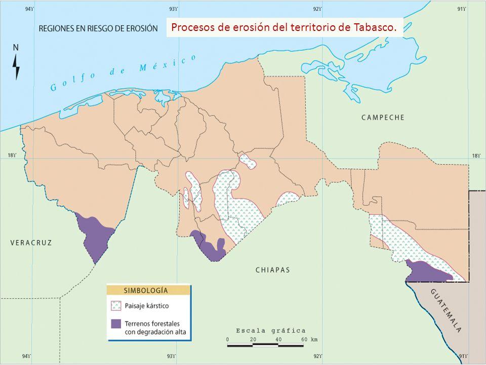 Procesos de erosión del territorio de Tabasco.