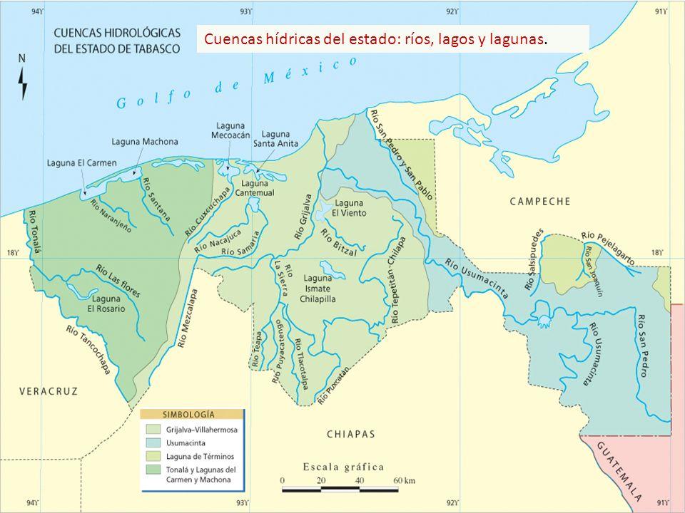 Cuencas hídricas del estado: ríos, lagos y lagunas.