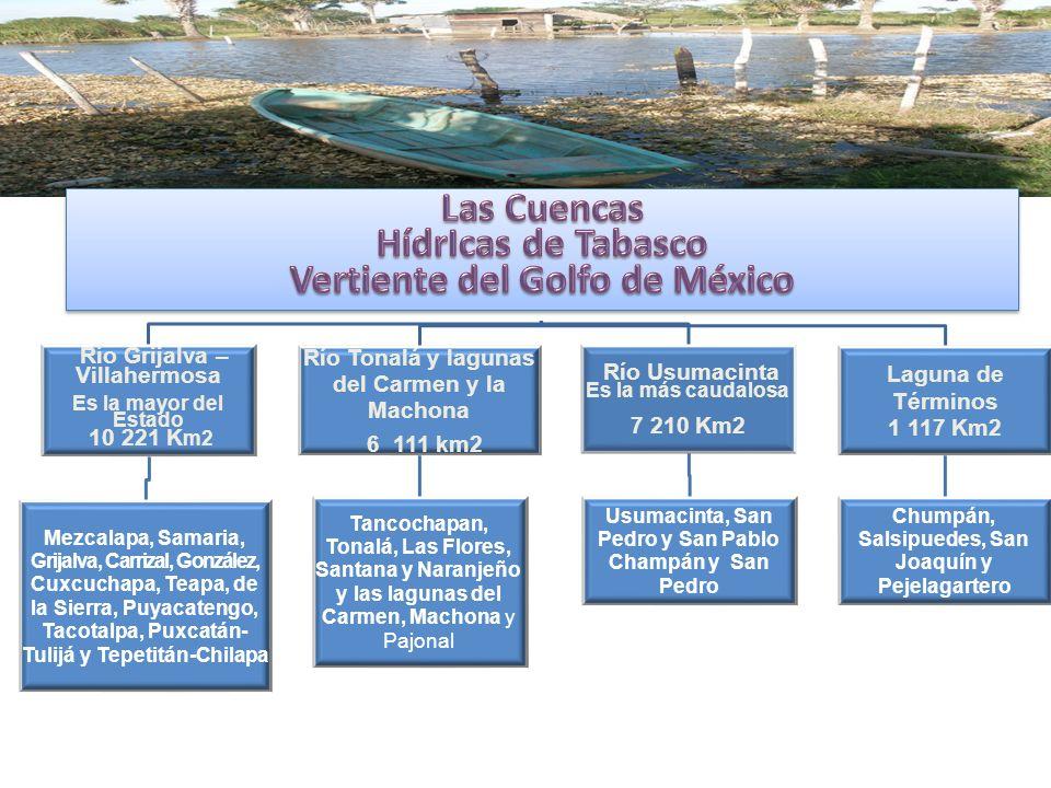 HídrIcas de Tabasco Las Cuencas Hidrológicas de Tabasco