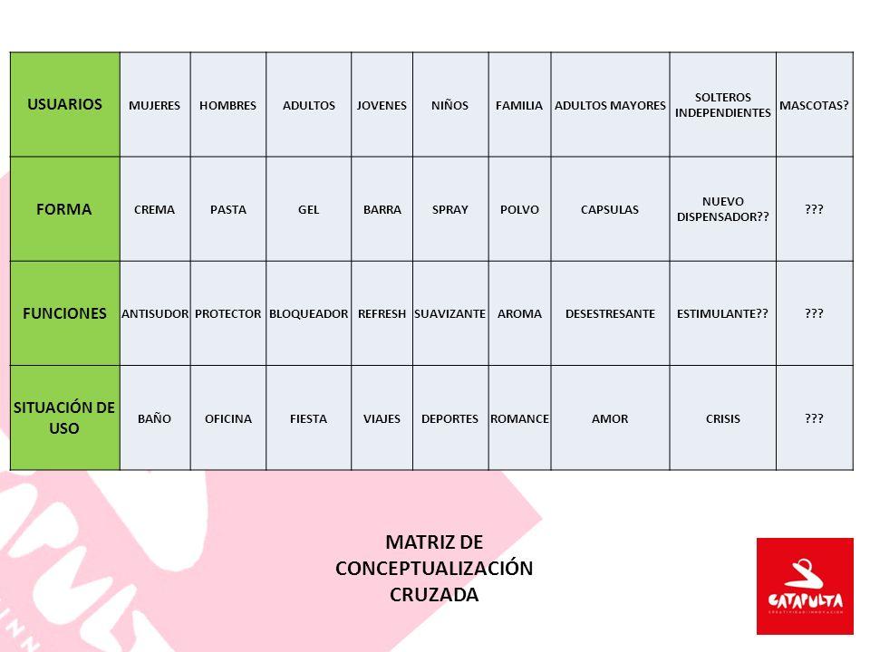 SOLTEROS INDEPENDIENTES MATRIZ DE CONCEPTUALIZACIÓN CRUZADA