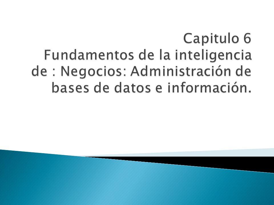 Capitulo 6 Fundamentos de la inteligencia de : Negocios: Administración de bases de datos e información.