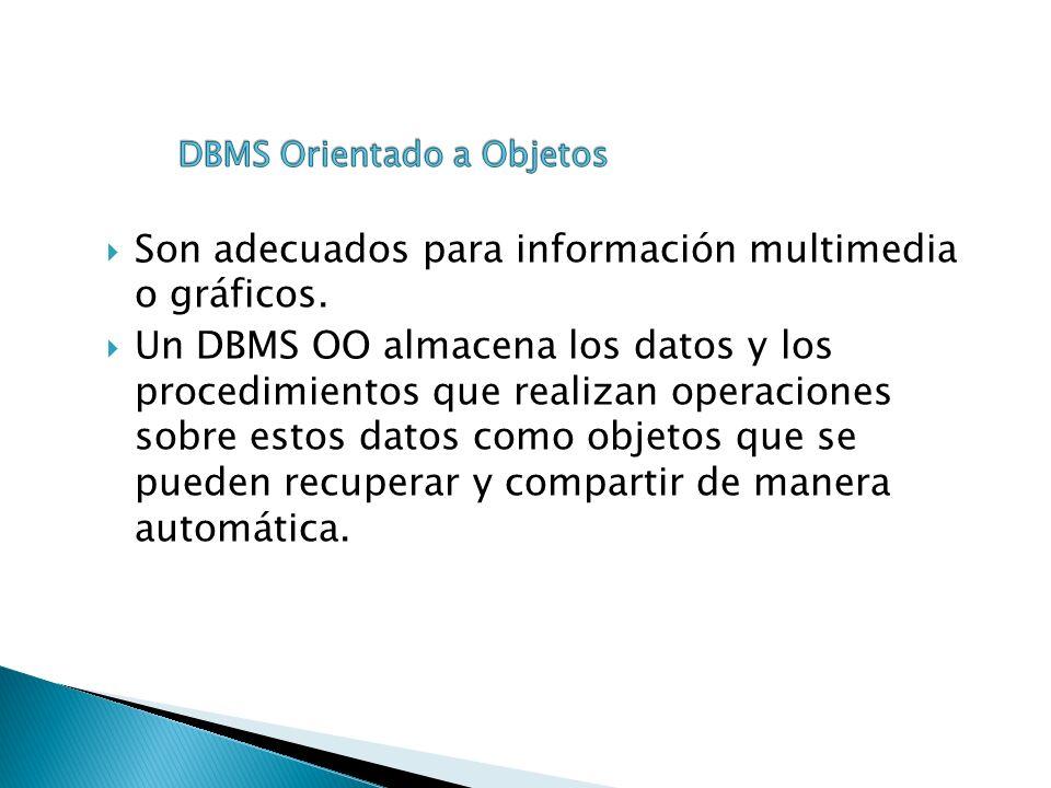 Son adecuados para información multimedia o gráficos.