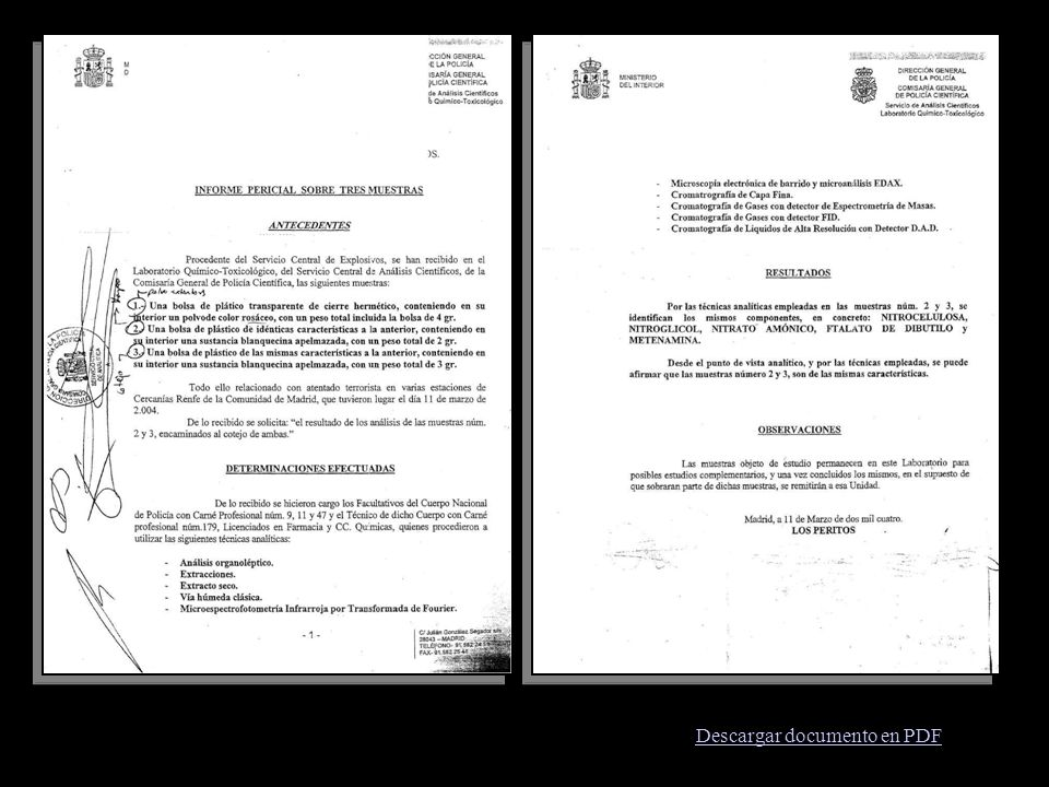 Descargar documento en PDF