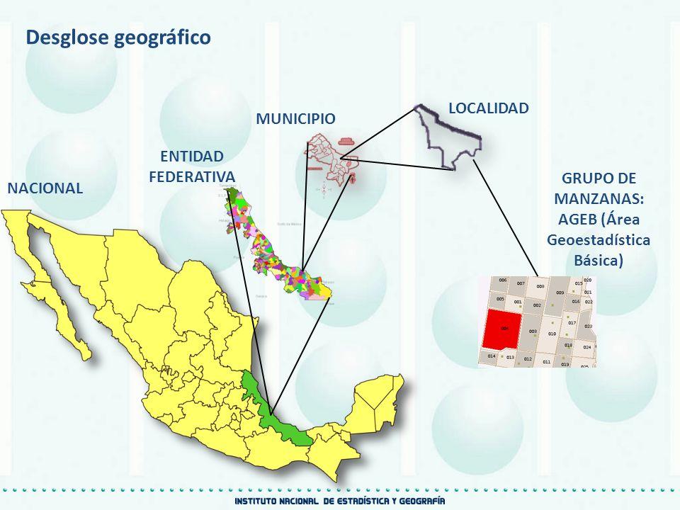 AGEB (Área Geoestadística Básica)