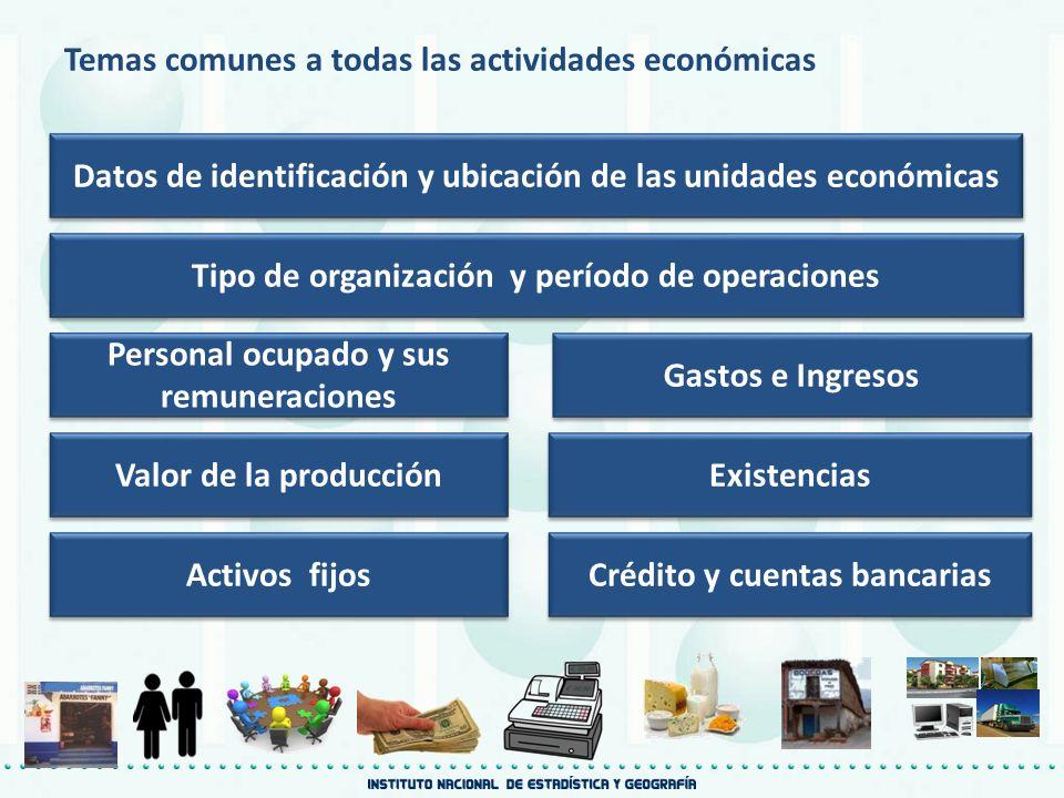 Temas comunes a todas las actividades económicas