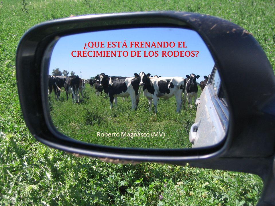 MANEJO REPRODUCTIVO DEL PLANTEO LECHERO