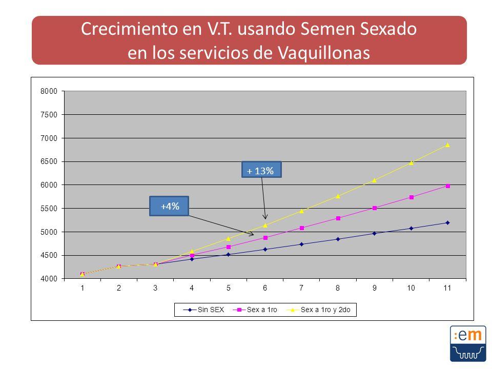 Crecimiento en V.T. usando Semen Sexado en los servicios de Vaquillonas
