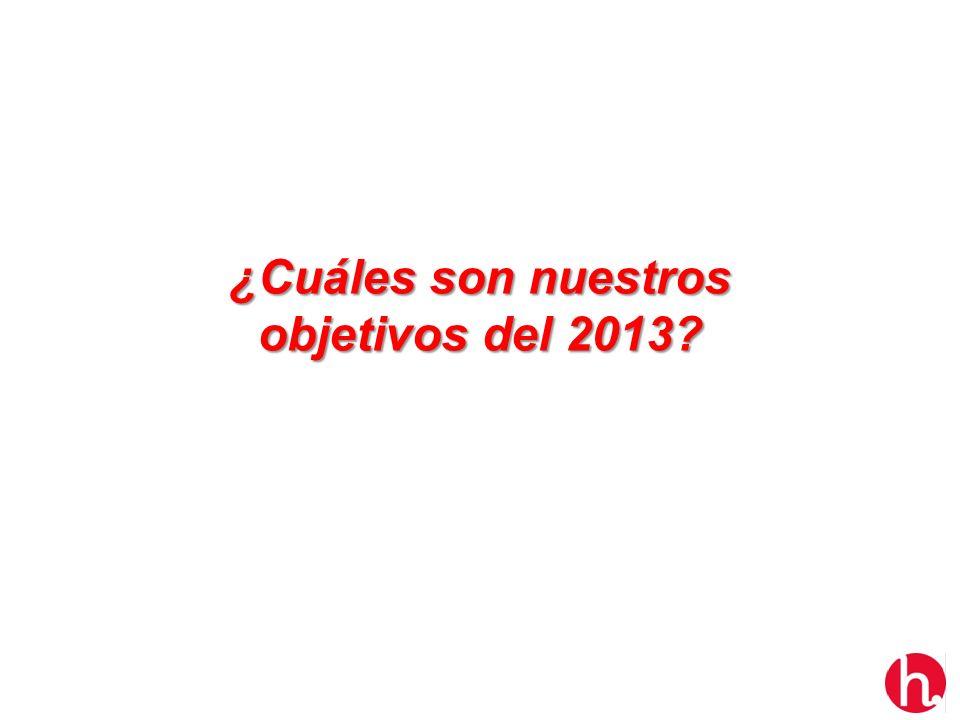 ¿Cuáles son nuestros objetivos del 2013