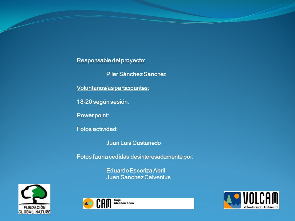 Responsable del proyecto: