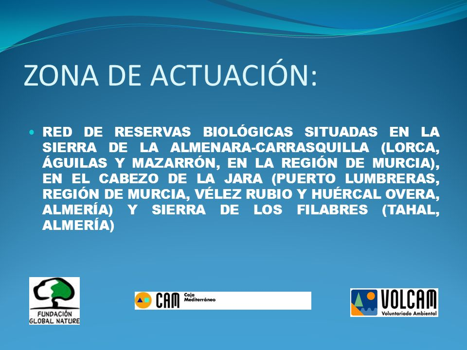 ZONA DE ACTUACIÓN: