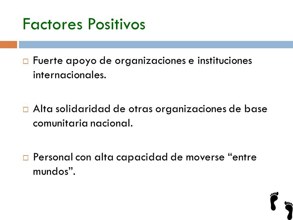 Factores Positivos Fuerte apoyo de organizaciones e instituciones internacionales.
