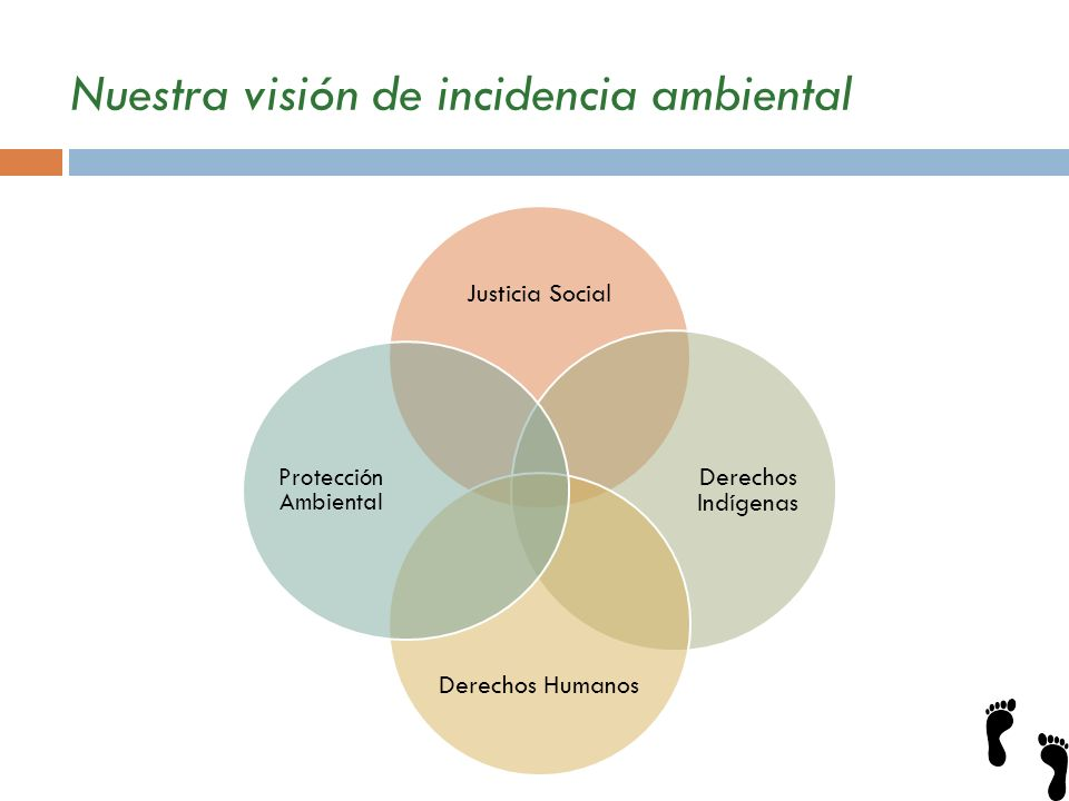 Nuestra visión de incidencia ambiental