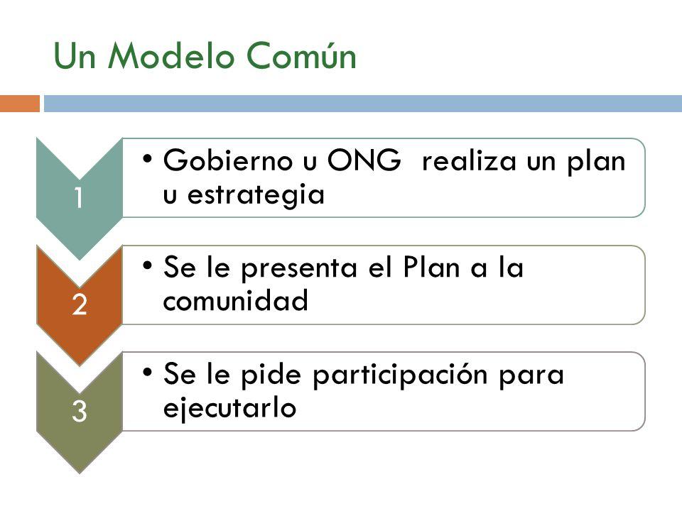 Un Modelo Común 1 Gobierno u ONG realiza un plan u estrategia 2