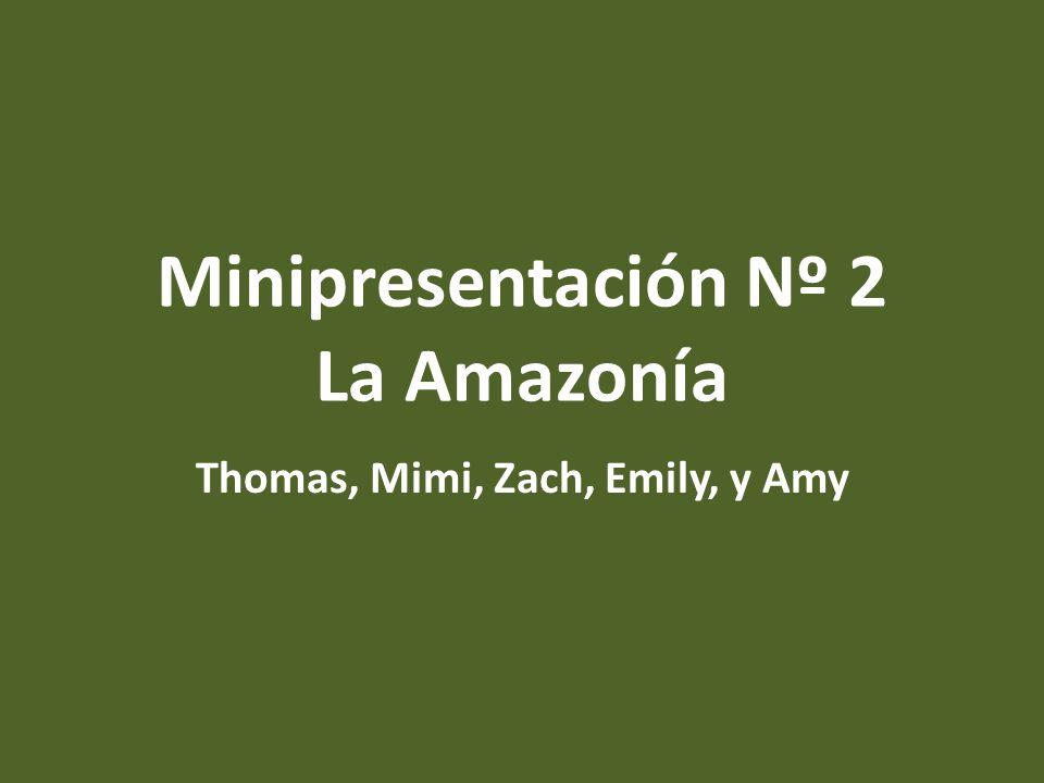 Minipresentación Nº 2 La Amazonía