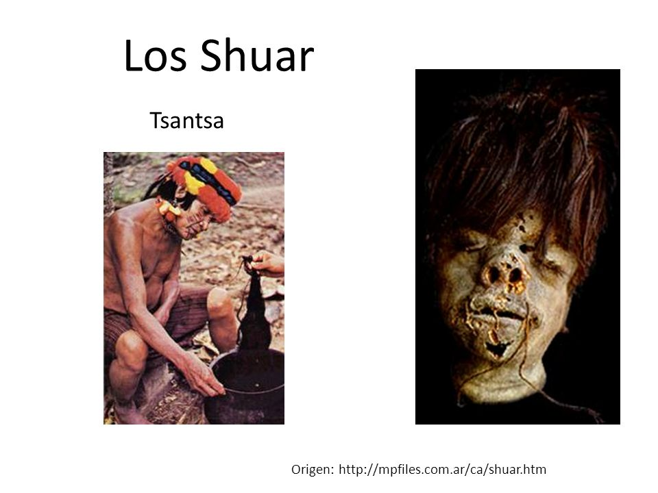 Los Shuar Tsantsa Origen: http://mpfiles.com.ar/ca/shuar.htm