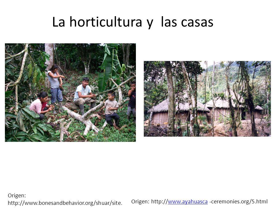 La horticultura y las casas