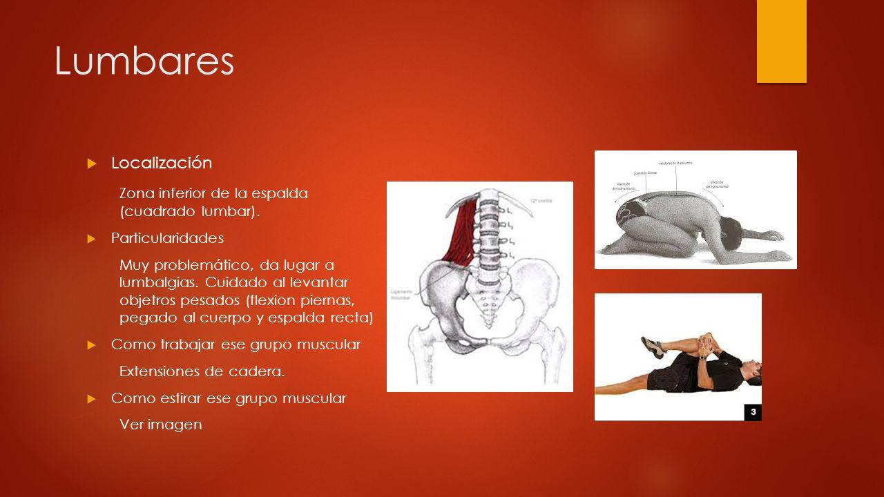 Lumbares Localización Zona inferior de la espalda (cuadrado lumbar).
