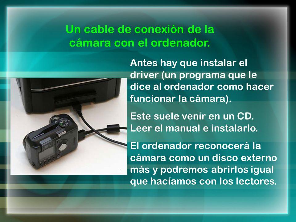 Un cable de conexión de la cámara con el ordenador.