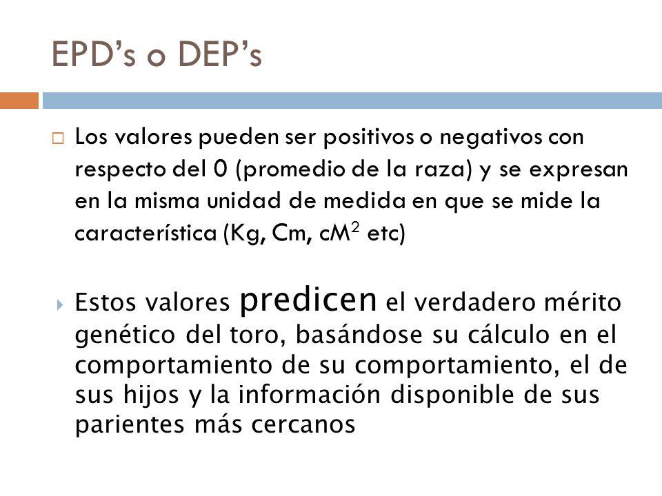 EPD's o DEP's