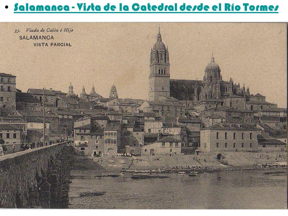 Salamanca - Vista de la Catedral desde el Río Tormes