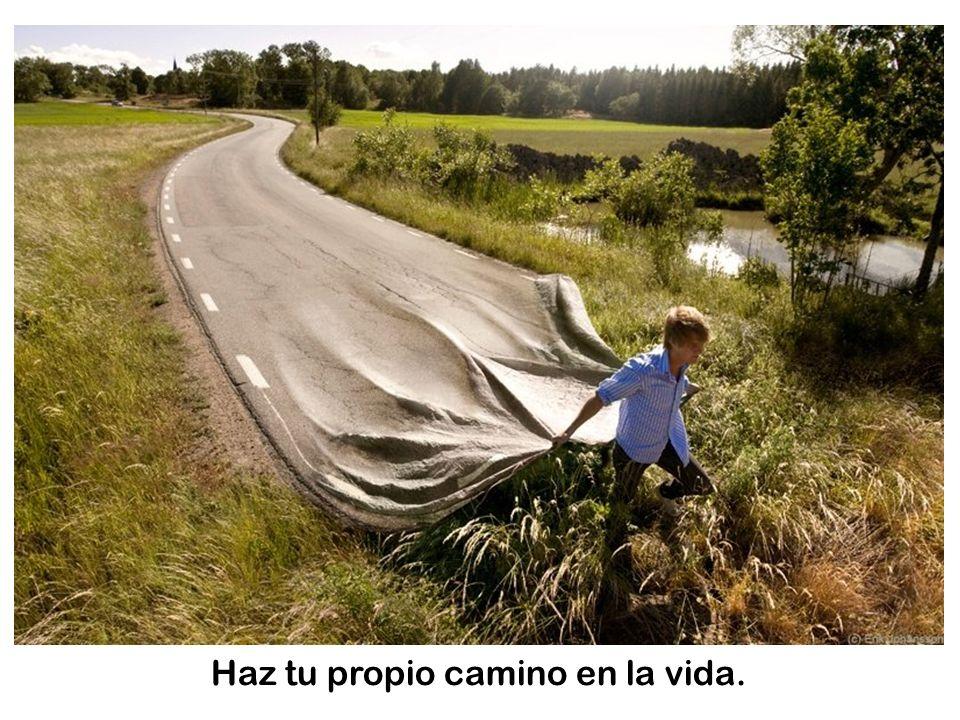 Haz tu propio camino en la vida.