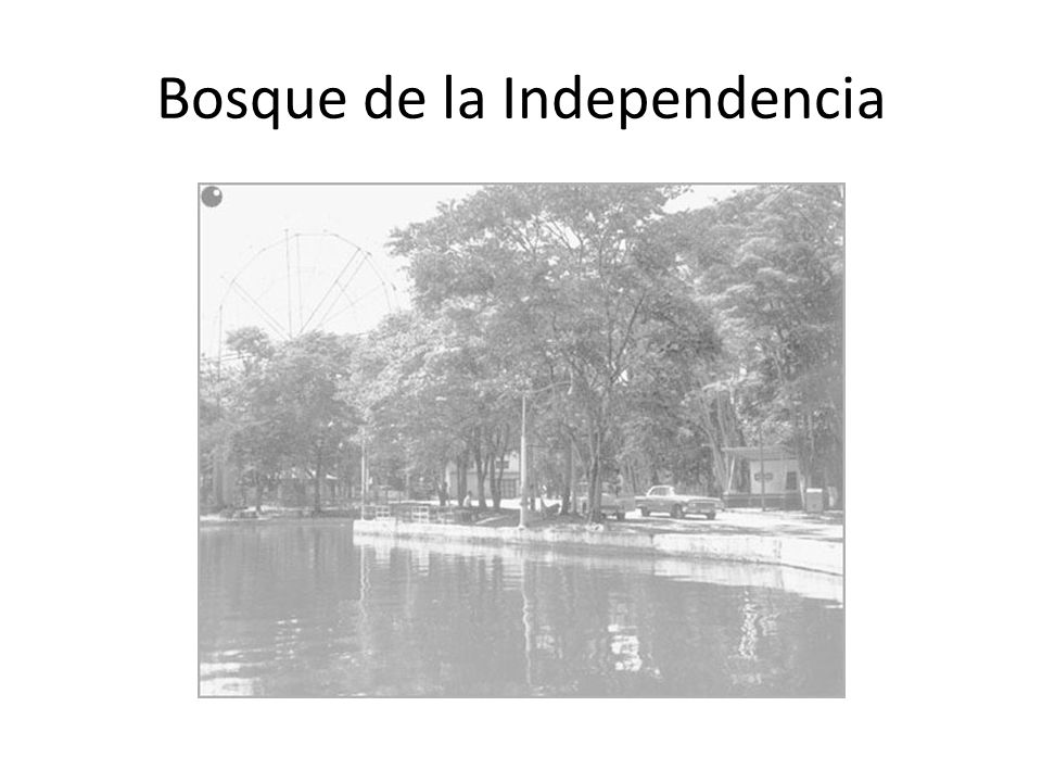 Bosque de la Independencia