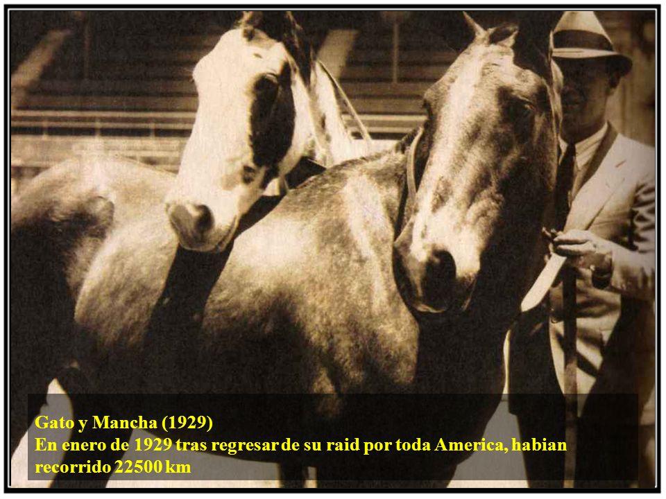 Gato y Mancha (1929) En enero de 1929 tras regresar de su raid por toda America, habian recorrido 22500 km.