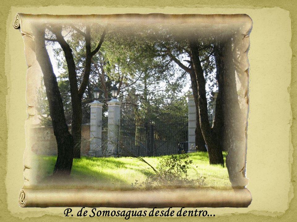 P. de Somosaguas desde dentro...