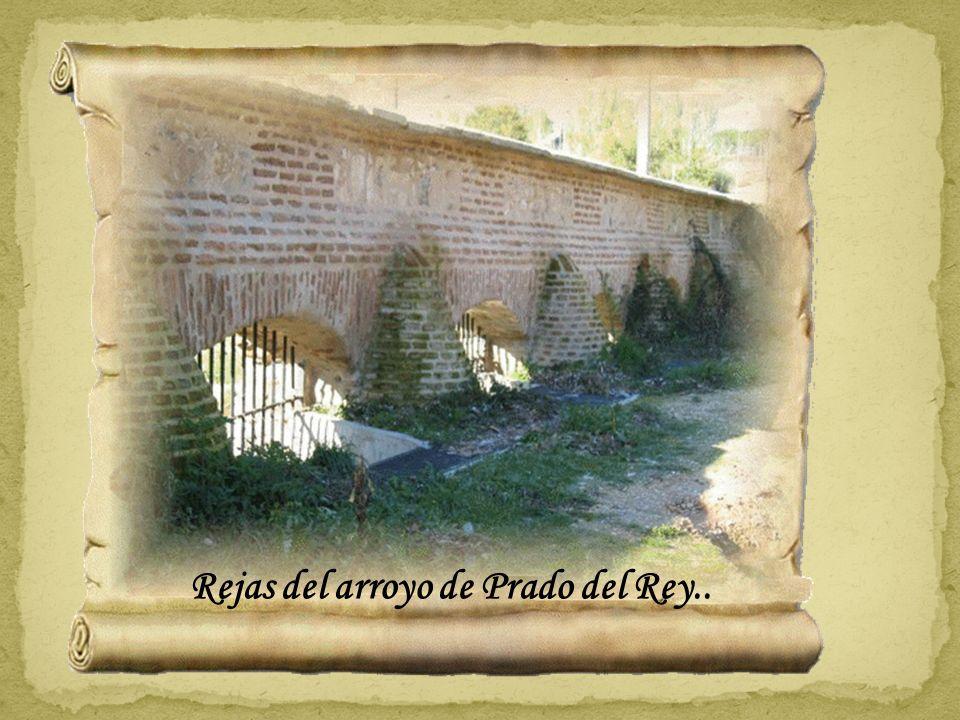 Rejas del arroyo de Prado del Rey..