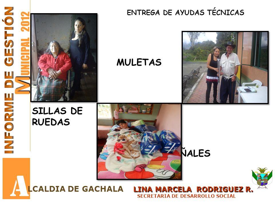 A MUNICIPAL 2012 INFORME DE GESTIÓN MULETAS SILLAS DE RUEDAS PAÑALES