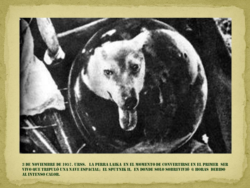 3 DE NOVIEMBRE DE 1957. URSS.