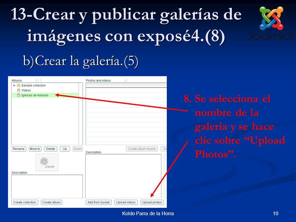 13-Crear y publicar galerías de imágenes con exposé4.(8)