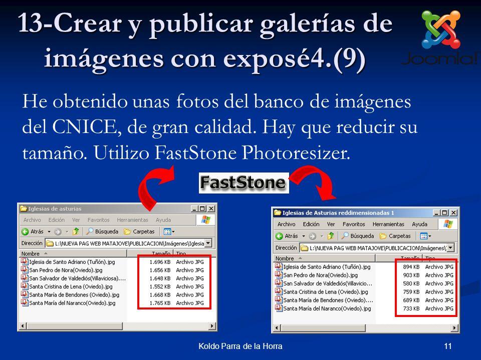 13-Crear y publicar galerías de imágenes con exposé4.(9)