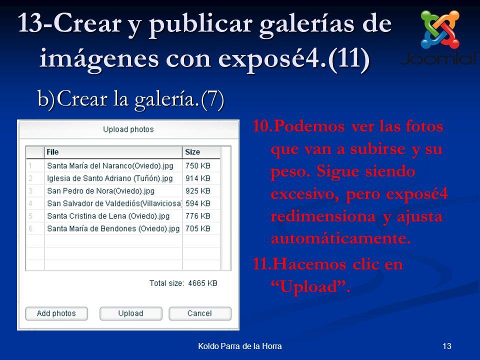 13-Crear y publicar galerías de imágenes con exposé4.(11)