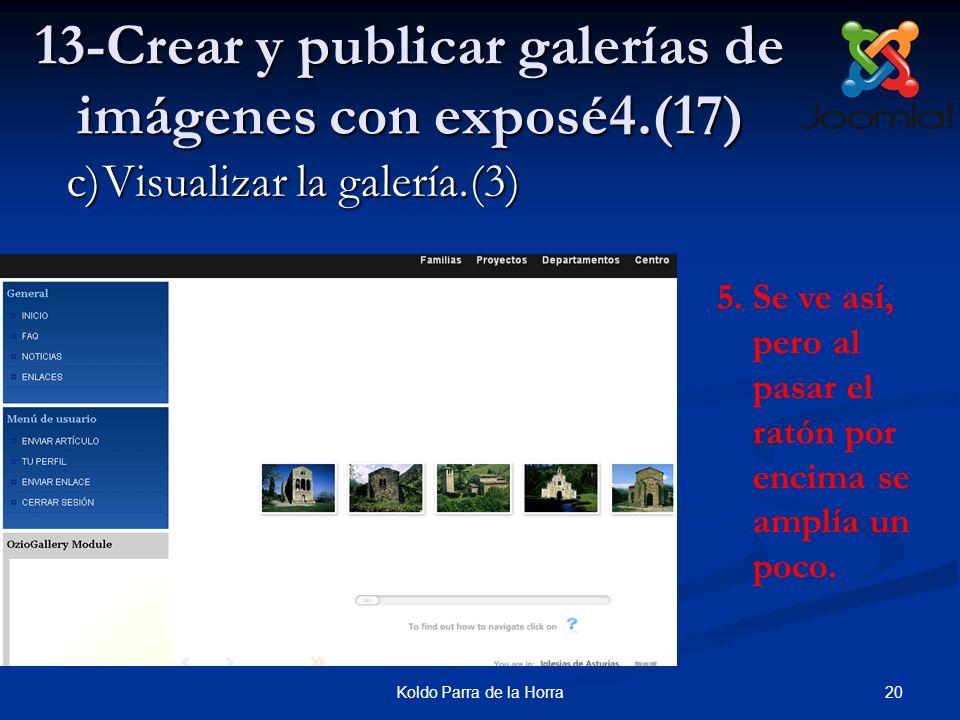 13-Crear y publicar galerías de imágenes con exposé4.(17)