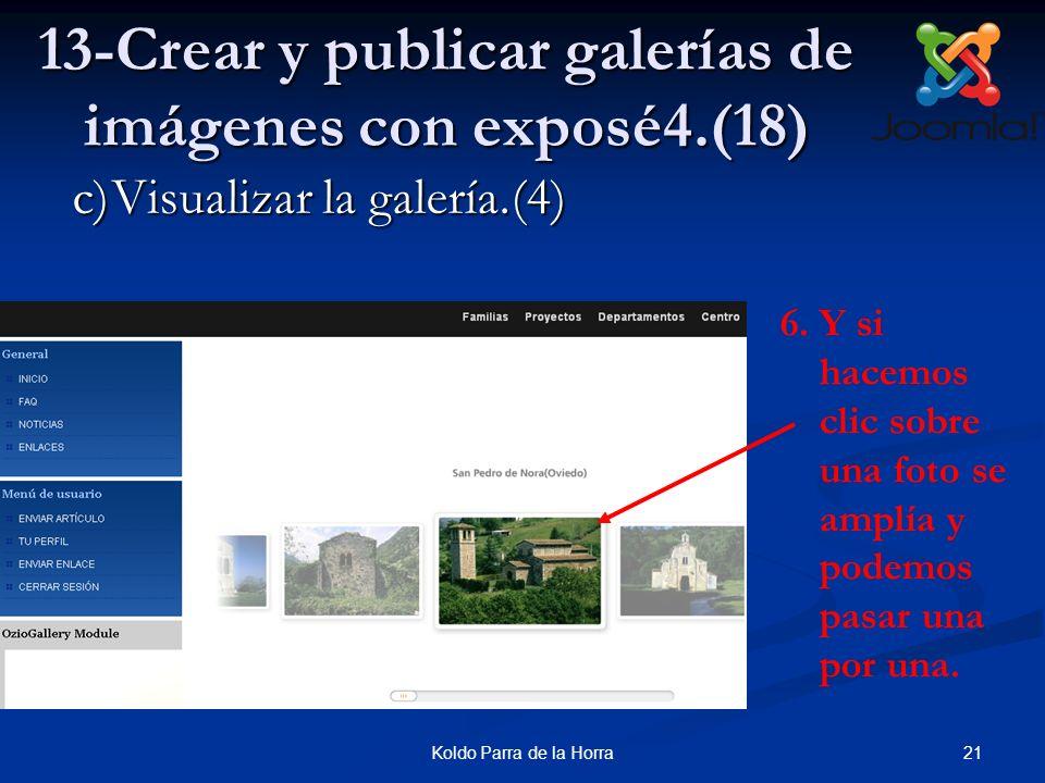 13-Crear y publicar galerías de imágenes con exposé4.(18)