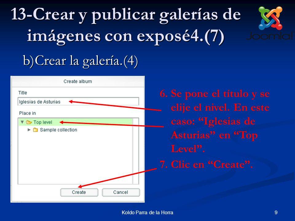 13-Crear y publicar galerías de imágenes con exposé4.(7)