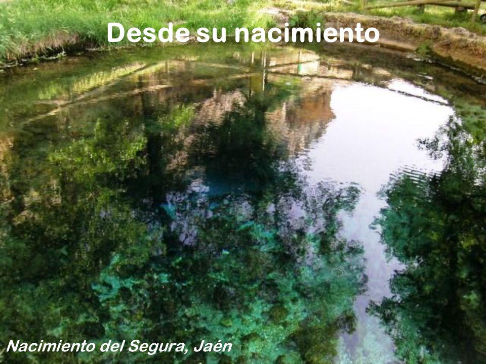 Nacimiento del Segura, Jaén