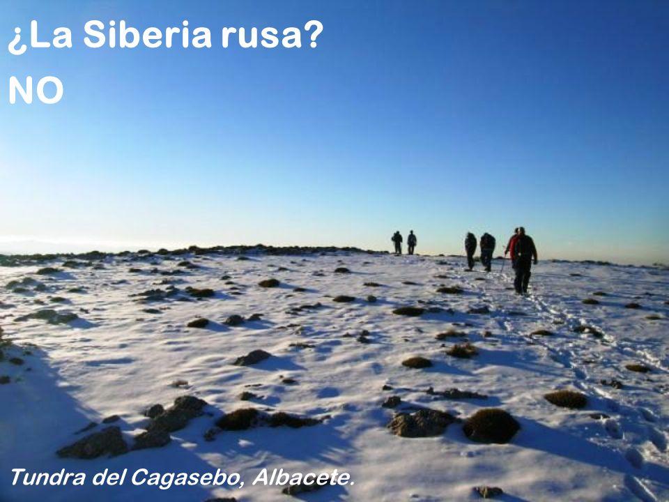 Tundra del Cagasebo, Albacete.
