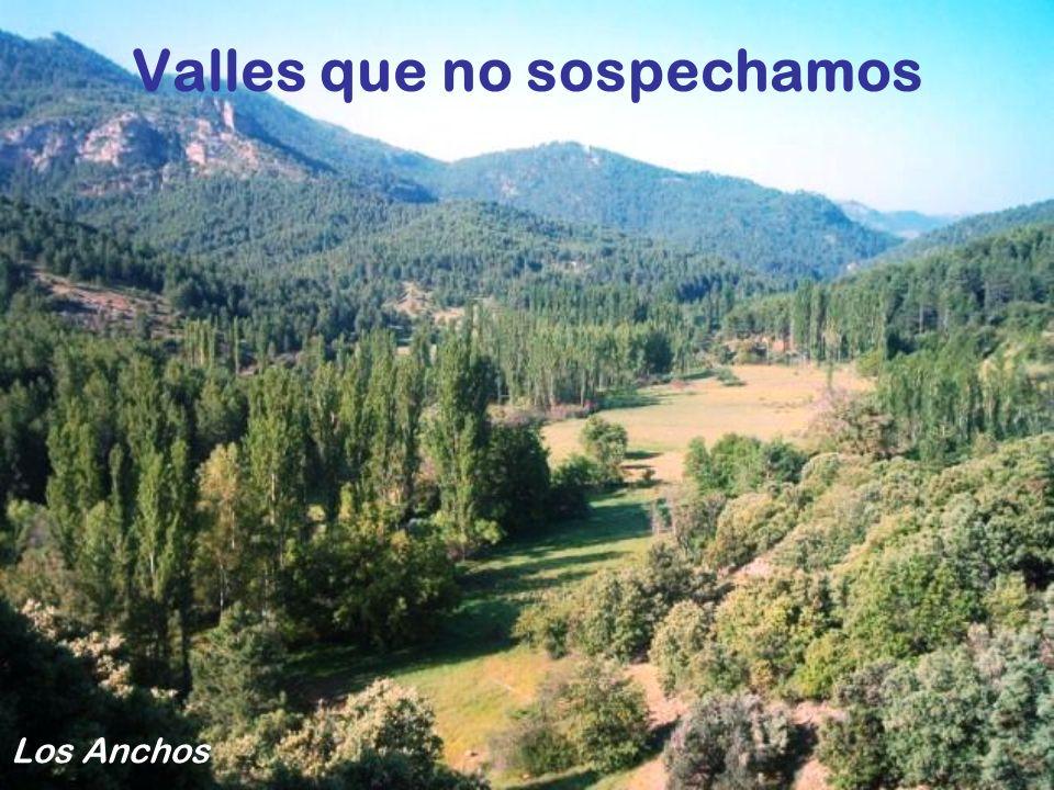 Valles que no sospechamos