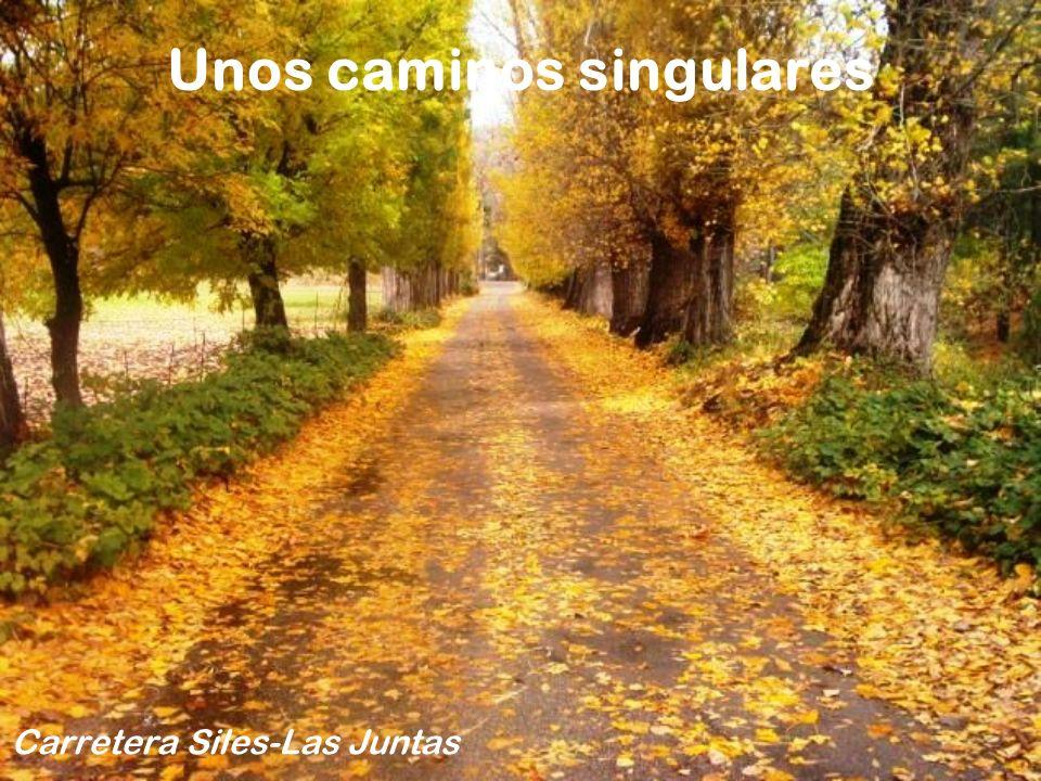 Unos caminos singulares