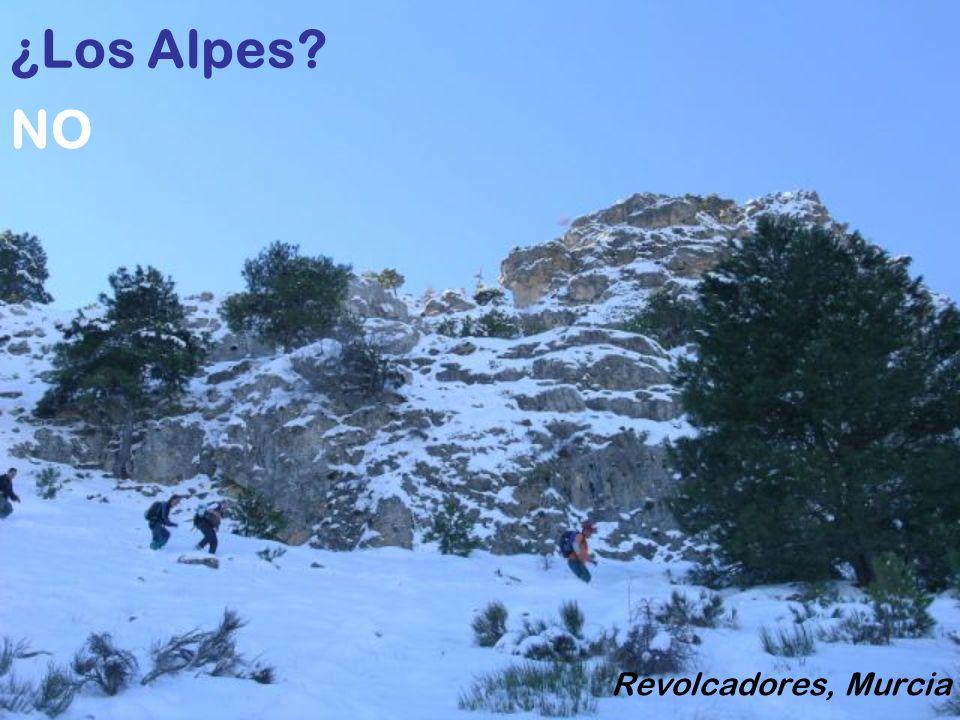 ¿Los Alpes NO Revolcadores, Murcia