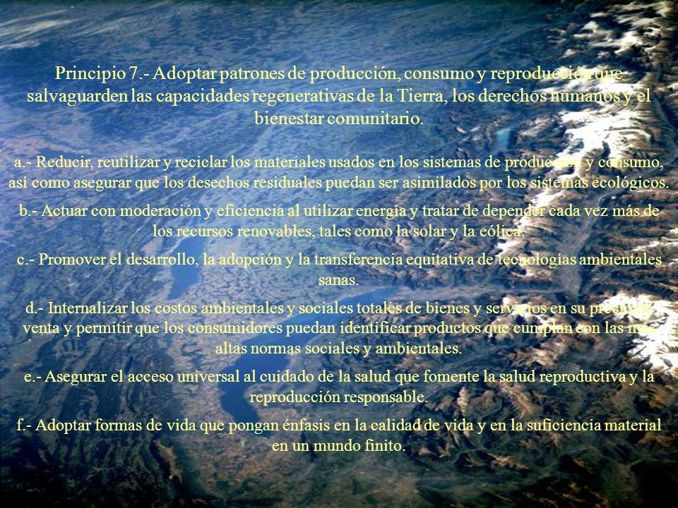 Principio 7.- Adoptar patrones de producción, consumo y reproducción que salvaguarden las capacidades regenerativas de la Tierra, los derechos humanos y el bienestar comunitario.