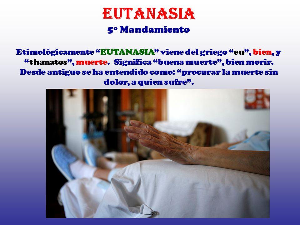 EUTANASIA 5º Mandamiento